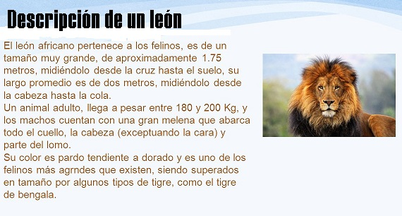 La descripción de un león